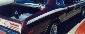 71 Duster Side Stripe