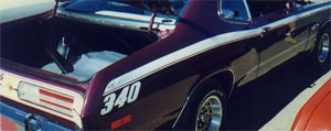 71-72 Duster Side Stripe